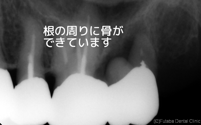 jutugo-dental